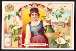 CHROMO Chocolat SUCHARD   +/- 1897  Serie 53    Filles Et Fleurs  Convolvulus Arvensis    Trade Card  Flowers And Girls - Suchard