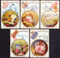 LOT DE 5 CHROMOS Chocolat SUCHARD   +/- 1897    Serie 55    Plantes Aquatiques        Trade Cards Aquatic Plants - Suchard