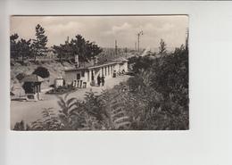 Balaton, Train Station, Steam Locomotive Realphoto Postcard (st329) Bahnhof - Hungary