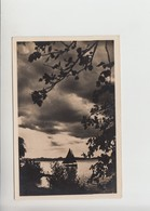 Balaton, Realphoto Used 1942 Postcard (st331) - Hungary
