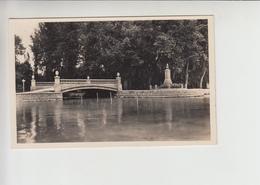 Balaton, Realphoto Unused Postcard (st337) - Hungary