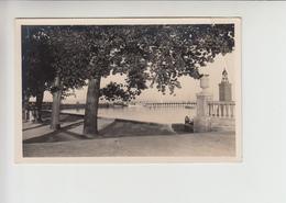 Balaton, Realphoto Unused Postcard (st338) - Hungary