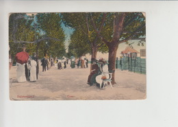Balaton, Used 1916 Postcard (st369) - Damaged - Hungary