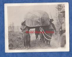 Photo Ancienne - MEZY ( Aisne ) - Soldats Américains Du 6th Engineers Avec Un Bateau Allemand - 1918 WW1 Américain Front - War, Military