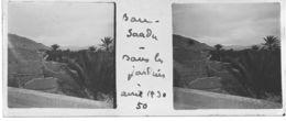 050 PP ALGERIE BOU-SAADA - Dans Les Jardins Avril 1930 - Glass Slides