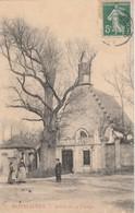 80 - BELLANCOURT - Monflières - Arbre De La Vierge - Autres Communes