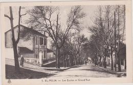 (R7) ALGERIE , EL-MILIA, Les écoles Et La Grand'rue - Algeria