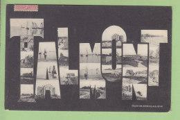 TALMONT : Multivue.. 2 Scans. Edition Billaud - Andere Gemeenten