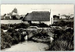 52222393 - Saintes-Maries-de-la-Mer - Saintes Maries De La Mer