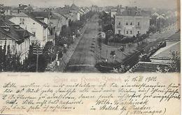 ALLEMAGNE -  1900 -  GRUSS AUS REMNITZ - STETZSCH -  MEISSNER STRASSE -  RESTAURANT - Germania