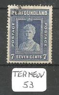 TERRE NEUVE YT 222(B) Ob - 1908-1947