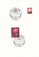 Switzerland  PTT Card Rheinfelden Solbad-Bains Salins 1959  (G91-11) - Covers & Documents