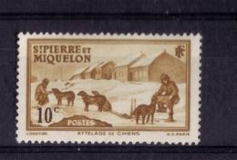 N* 171 NEUF** - St.Pierre & Miquelon