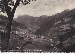 CARTOLINA - POSTCARD - BRESCIA - COLLIO VALTROMPIA  - M. 1000 S.M. - PANORAMA - Brescia