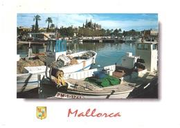 CART X BELGIO - Palma De Mallorca