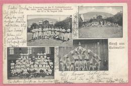 68 - GRUSS AUS GEBWEILER - GUEBWILLER - V. Verbandsturnfest - Fête De Gymnastique 1903 - Guebwiller