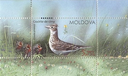 Block Of Stamps Of Moldova -Birds From Moldova's Regions 2015 UNC - Moldova