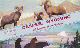 Wyoming Greetings From Casper Oil Capitol Of The Rockies