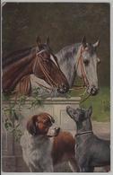 Pferde Horses Chevaux Mit Hunde - Artist C. Reichert Serie 1232 - Chevaux