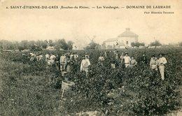 VIN(VENDANGES) SAINT ETIENNE DU GRES - Métiers