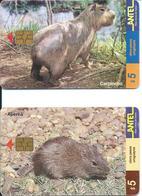 2 Télécartes Antel Uruguay Apera Carpincho (D 465) - Uruguay