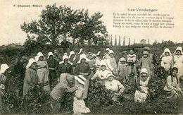 VIN(VENDANGES) MACON - Métiers