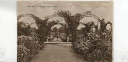 Postcard - Sandringham Rose Arch & Fountain - No Card No. - Unused Very Good+ - Unclassified
