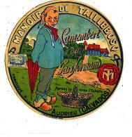 R 336/ ETIQUETTE DE FROMAGE -  CAMEMBERT  DU GARS NORMAND  MANOIR DE TAILLEBOSQ   AUDRIEU  (CALVADOS) - Cheese