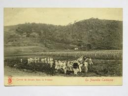 C.P.A. En Nouvelle Calédonie Corvée Des Forçats Dans La Brousse - Nouvelle-Calédonie