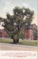 New York Jamestown High School With Historic Willow Tree - NY - New York