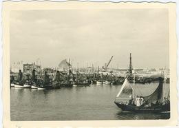 Bateaux De Peche Au Port - Barche