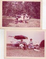 FAMILIE - KESTER - D' HOND  UIT STROMEEK   ( Vogel Deskundige )  13 OP 9 CM - Photographs