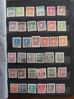 LOT CHINE CHINA 320 TIMBRES ANNEES 1910 A 1970 SUR PLANCHES AVEC PHOTOS - Chine