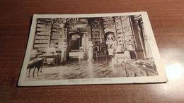 Cartolina  Trieste Biblioteca Miramar  Fp Non Viaggiata(a633) - Unclassified