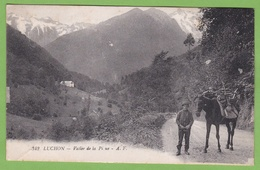 CPA LUCHON Vallée De La Pique Animé Cheval Mule - Luchon