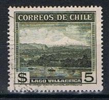 Chili Y/T 177 (0) - Chili