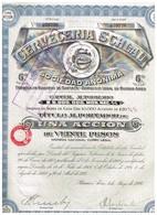 Ancienne Action - Cerveceria Schlau - Titre De 1926 - Industrie