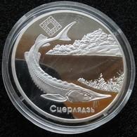 Belarus 20 Rub 2007 Silver PROOF Fish - Belarus