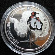 Belarus 20 Rub 2007 Silver PROOF Polar Year - Wit-Rusland