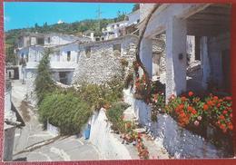 GRANADA - PAMPANEIRA - Calle Tipica - Alpujarras - Rue Tipique NV - Granada
