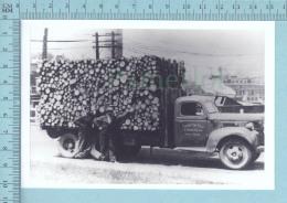"""East Angus Quebec -Camion De """"pitounes"""" De La Brompton Pulp And Paper -CPM - Altri"""