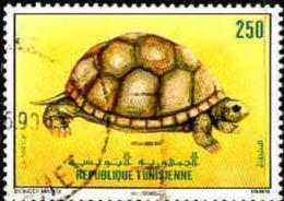 Tunisie (Rep) Poste Obl Yv:1131 Mi  Yv:0,5 Euro La Tortue (Beau Cachet Rond) - Tunisia