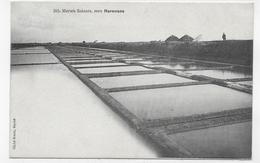 (RECTO / VERSO) MARENNES EN 1906 - ENVIRONS - N° 202 - LES MARAIS SALANTS - CPA VOYAGEE - Marennes