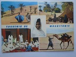 D157685  Mauritania - Mauritanie  1971 - Mauritania