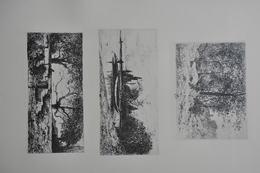GRAVURES 1061 à 1063 / LISIERE DE BOIS Par J.A. ACHARD Né à VOREPPE / BORDS DE L'AIN - RIX Par ADOLPHE APPIAN Né à LYON - Prints & Engravings