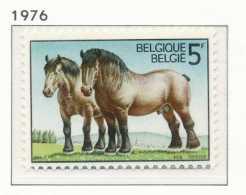 D- [151488] **/Mnh-[1810] Belgique 1976, Chevaux De Traits Ardennais, SNC - Pferde