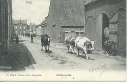 Doel - Middenstraat ,carte Animée Enfants Vaches . N1218 F. Hoelen - Ph Cappellen - Beveren-Waas