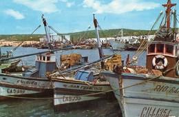 Fischerboote Im Hafen Von Barbate/Südspanien - Pesca
