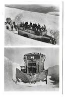 SKI - Montée Au GRAND BALLON  - SKIJORING Et Chasse-neige - Guebwiller