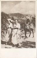 Dubrovnik Konavle Folk Costume 1955 - Croatia